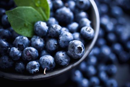 The Marketing of Blueberries. www.businessmanagement.news