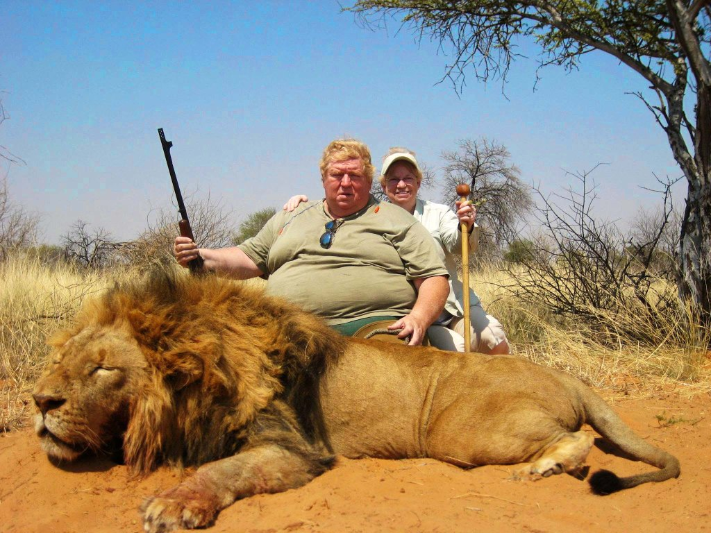 Lions next in line of fire as US rolls back curbs on African hunting trophies. www.businessmanagement.news