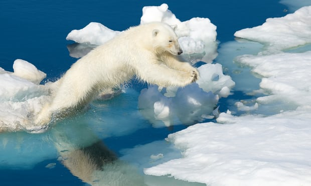 """Scientists Alarmed by """"Crazy"""" Temperature Rises in Arctic. www.businessmanagement.news"""