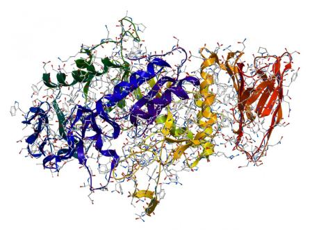 Scientists Accidentally Create Mutant Enzyme that may Save or Destroy the World. www.businessmanagement.news
