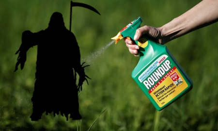 Monsanto Lawsuit. www.businessmanagement.news