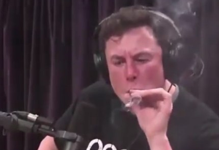Tesla shares crash after Elon Musk smokes joint on live web program