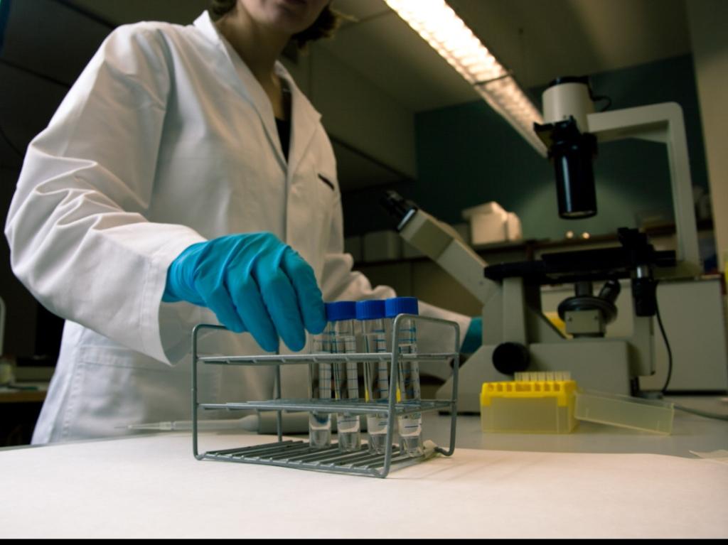 Trump Ends Life Saving Fetal Tissue Research. www.insightnews.today