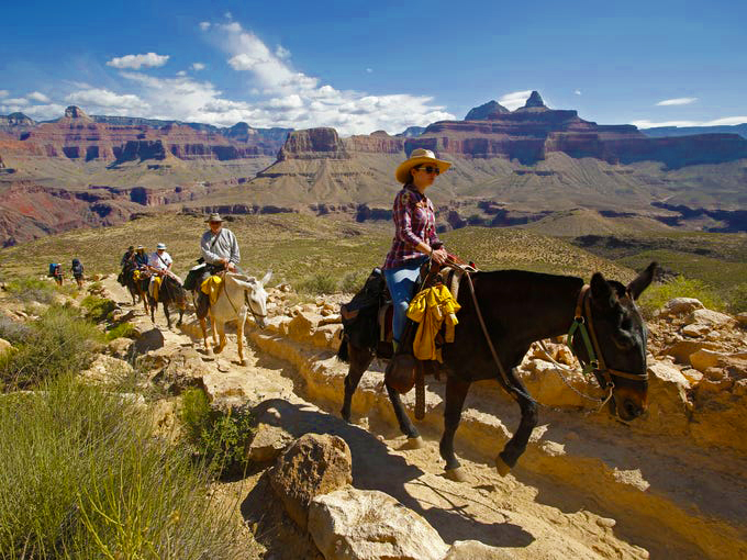 The 6 Best Things to do in Arizona. www.insightnews.today